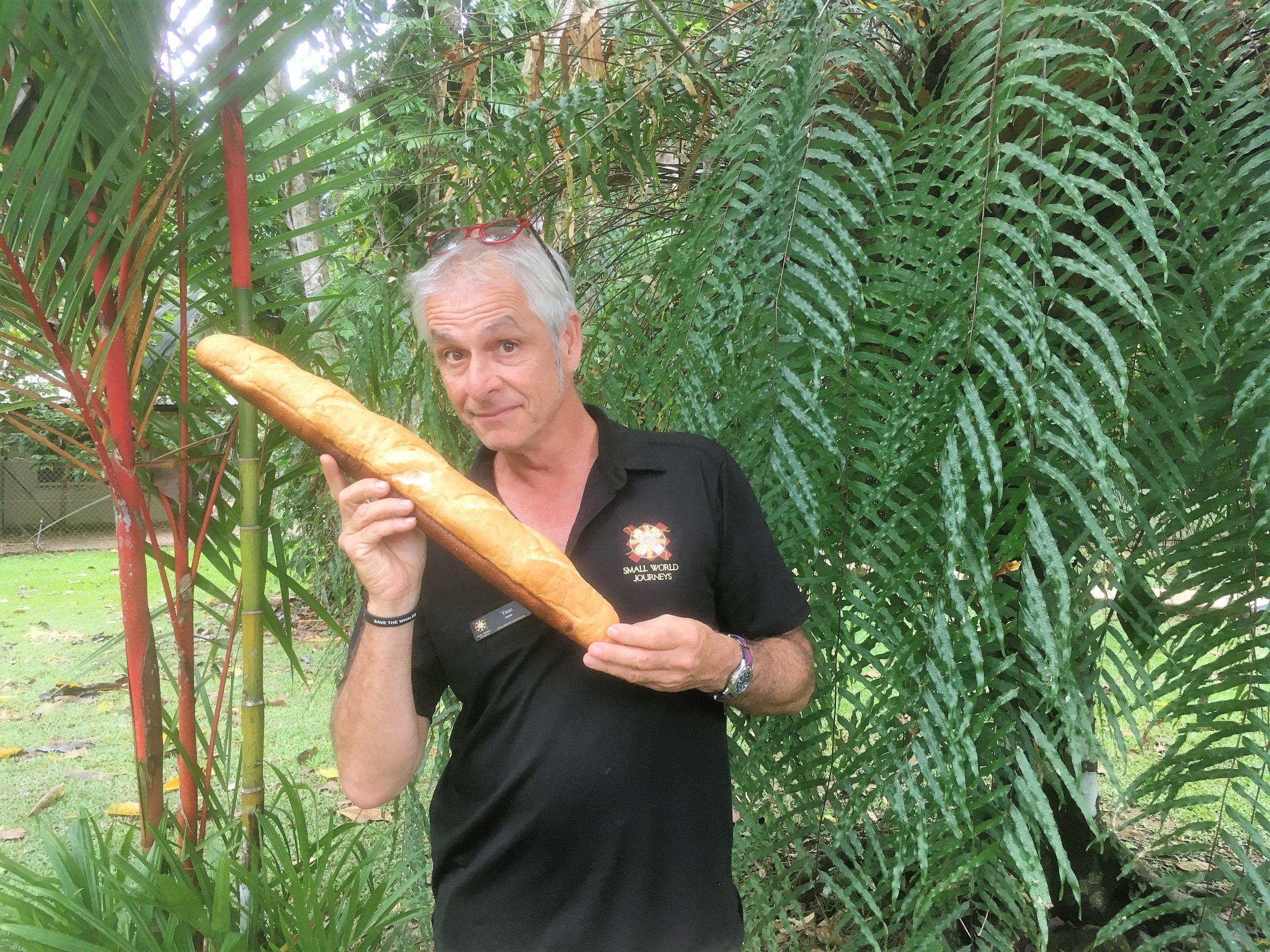 Yann Levieux